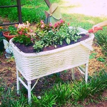 Recycled Wicker Baby Bassinett Into Planter Recycle Upcycle Salvage Diy Repurpose For