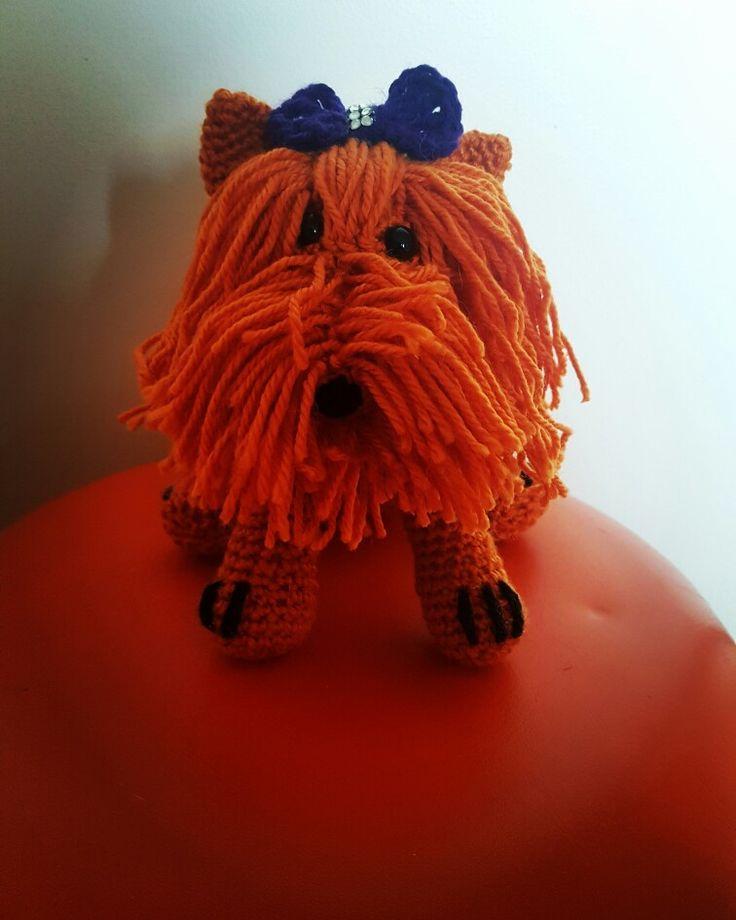 Orange Terrier #dirtygrannycrochet #crochet #crochetdog #crochettoy #terrier #orange