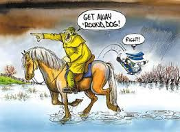footrot flats horse - Google. Classic NZ weather