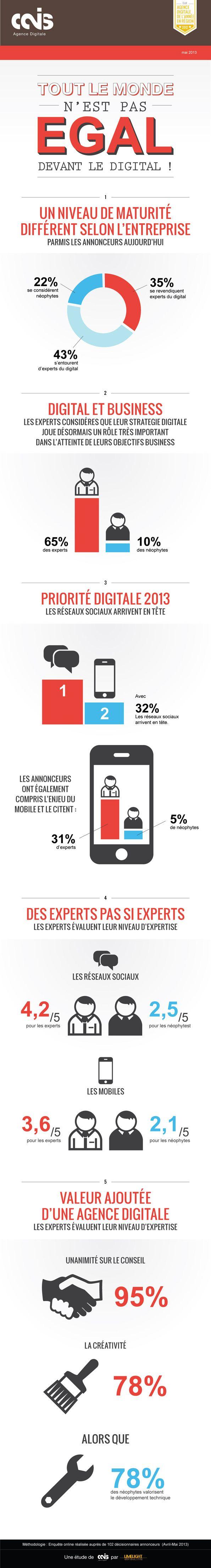 Infographie : 35% des annonceurs se considèrent comme experts du digital