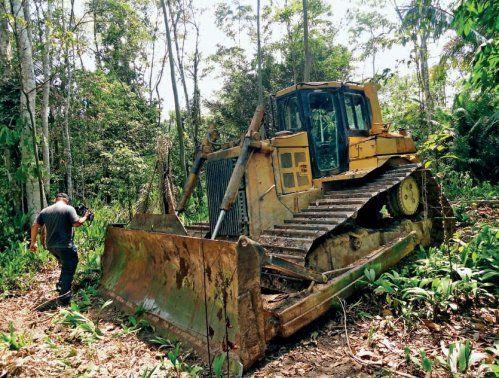 Mafie mají různé finty, jak prodat nelegálně pokácené dřevo. Stroje v pralese je ale usvědčují ze lži.