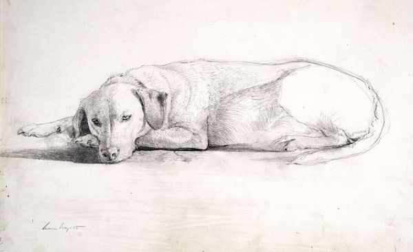 "A pencil-drawing study for Andrew Wyeth's ""Ides of March,"" also the title of the exhibition at Brandywine River Museum that explores the artist's method and inspiration. For instance, the dog, Nell, is Wyeth's. The Andrew and Betsy Wyeth Collection"