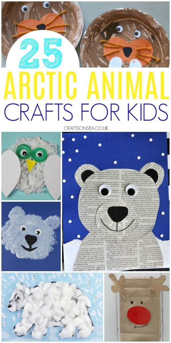 25 Easy And Fun Arctic Animal Crafts For Kids Winter