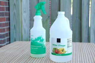 Homemade Fly Repellents for the Yard | eHow