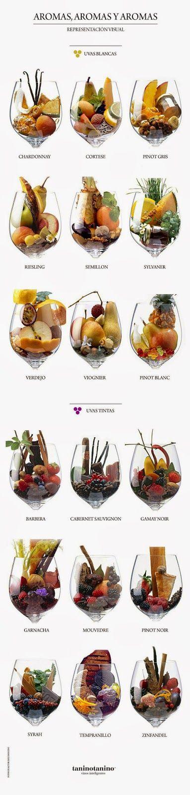 Vinho, Cerveja e Gastronomia: Rapidinhas do Vinho - Aromas