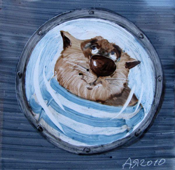 cat by A Yaryshkin