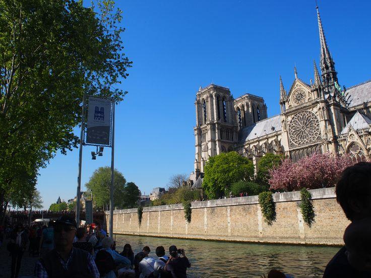 Paris セーヌ川 ノートルダム大聖堂