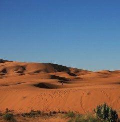 メルズーモロッコのホテル前に広がるサハラ砂漠  女が砂丘の中にいたちょっと絵になるね  ツアーでも閑散期にはこんなロケーションの良いホテルに泊まれる口コミサイトでチェックしたらよいよ  http://ift.tt/2aoW4EC  #メルズーガ #モロッコ #サハラ砂漠 #砂丘 #ツアー #海外旅行 tags[海外]