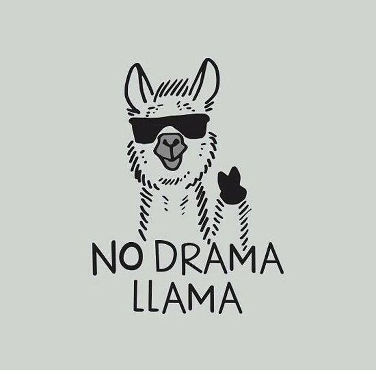 Save the drama for your lama! I love the drama lama