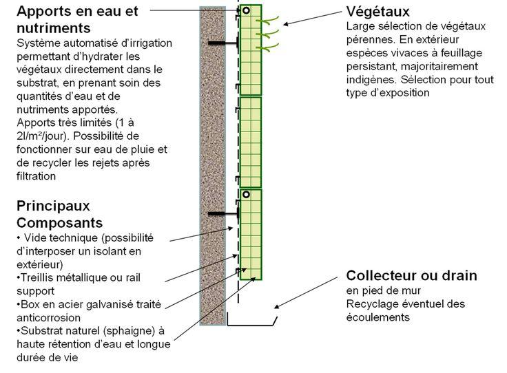 66 best murs v g taux images on pinterest - Fabriquer un mur vegetal interieur ...