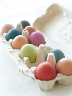 Little Greene Paint Company!  Awesome Vibrant Colours on Eggs
