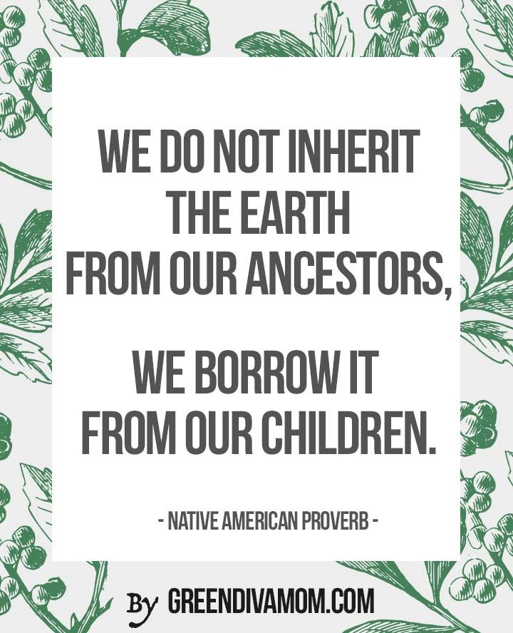 we do not inherit the earth from our ancestors, we borrow it from our children  https://www.greendivamom.com/reasons-to-go-green/