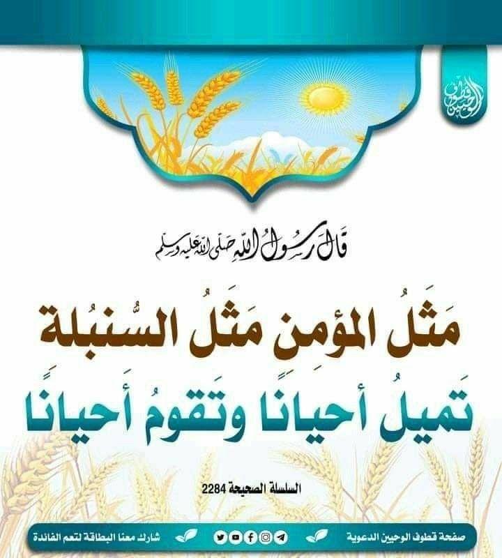 Pin By Ahmad On أحاديث نبويةوقدسية In 2021 Ahadith Hadeeth Islamic Quotes