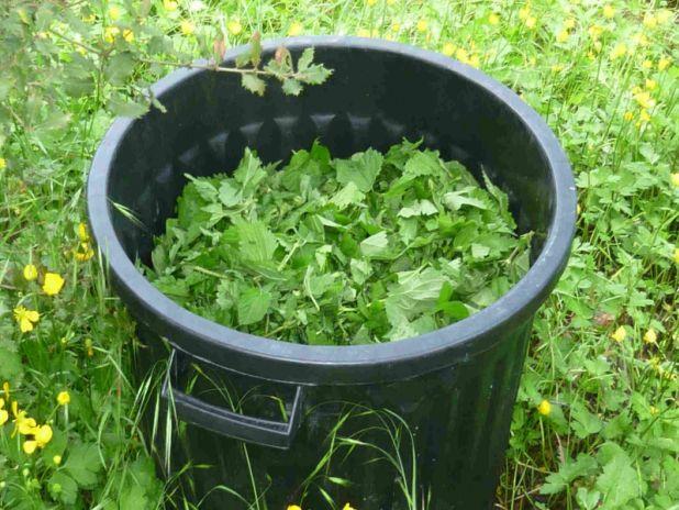 Fabrication de purin à partir de différentes plantes. Tableau très clair. Ici purin d'orties sur la photo. Alsagarden.