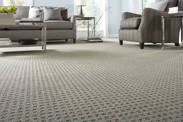 For Boys Room Stainmaster Carpet Lowe S Style Gentle