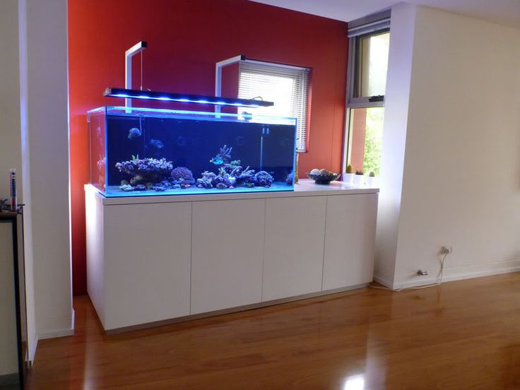 New tank with LED light - Reef Central Online Community