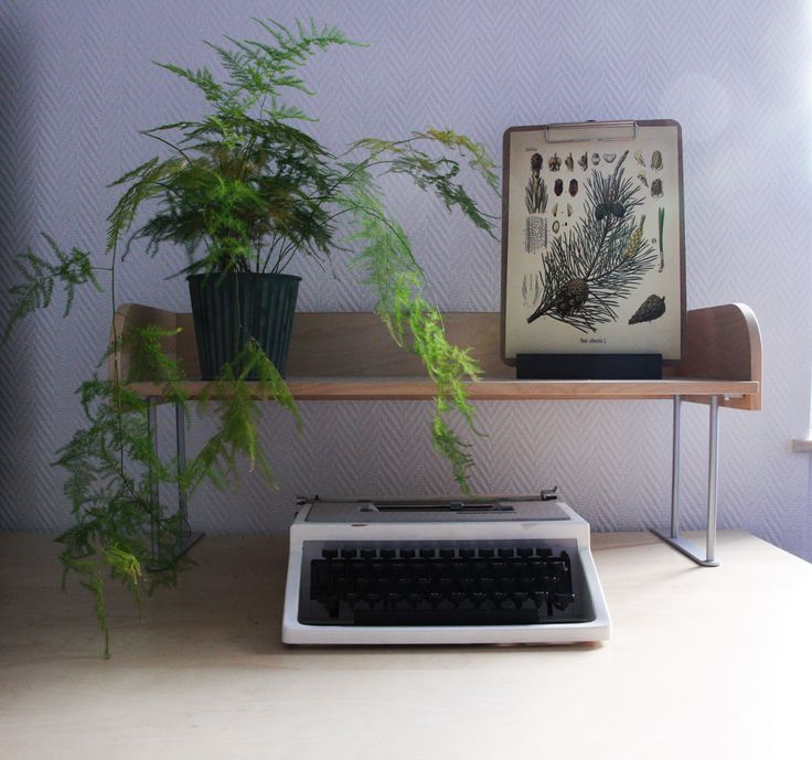 Pine tree | Green plant | Swedish design | Home decor | Interior | Inspiration | Posters & prints at Naturlaboratoriet!