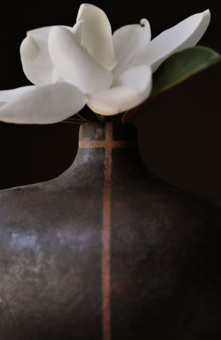 magnolia: White Simplicity, White Flower, Magnolias, Inspiration, Simply Beautiful, Wabisabi, Gardenias, Gardens, Favorite Flower