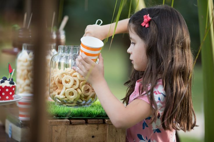 produção_bella_fiore_picnic_jardinagem_festa_crianças_ferias_comidas_decoração