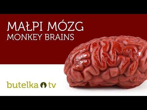 """Krwawy shot o nazwie """"Małpi Mózg"""" / Bloody shot called """"Monkey Brain"""""""