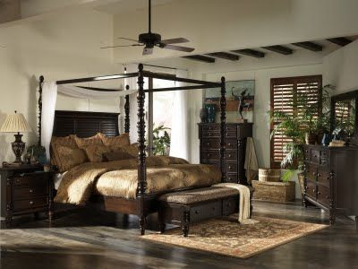 What is it? Dark wood for floors and furniture, some greenery (fronds, palms), dark plantation shutters or louvered doors