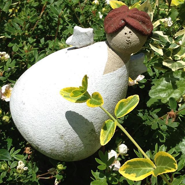 Popular  summer keramik garden garten nature natur naturelovers gardening