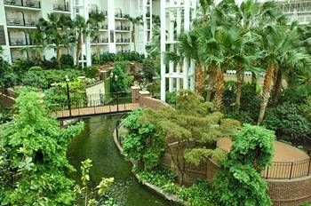 Gaylord Opryland Hotel in Nashville.  One of the most luxurious hotels ever! This photo is INSIDE the hotel!