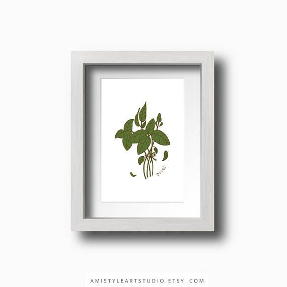 Herbs Printable Art - Basil printable kitchen decor with hand drawn botanical art by Amistyle Art Studio on Etsy