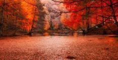 İnanmakta Zorluk Çekeceğiniz Muhteşem Doğa Paylaşımları