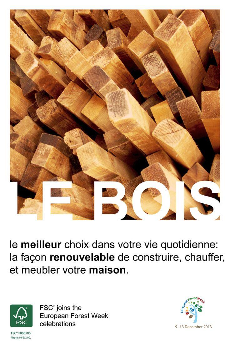 Le bois – le meilleur choix dans votre vie quotidienne : la façon renouvelable de construire, chauffer, et meubler votre maison