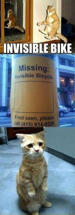 das unsichtbare fahrrad ;) mehr lustige bike bilder auf #bmxware