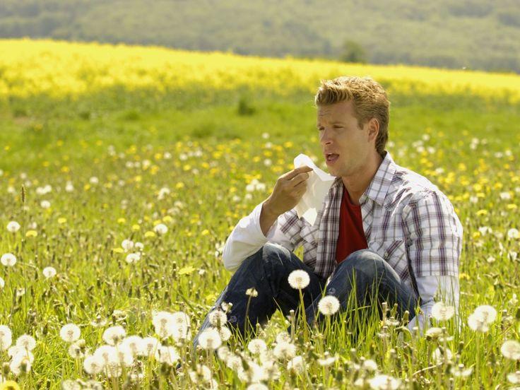 #Allergia: le migliori risposte da dare a chi si lamenta con te per starnuti, naso che cola e prurito http://www.gioia.it/idee/trend/news/g483/allergia-rimedi-se-lui-dice/