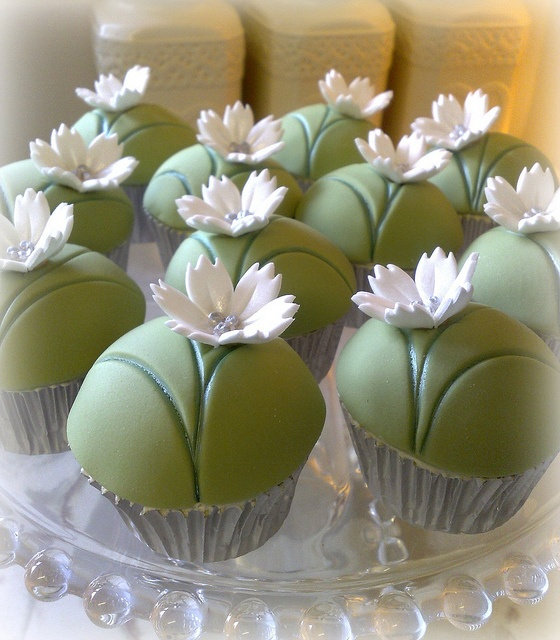 Little green cupcakes with white flowers
