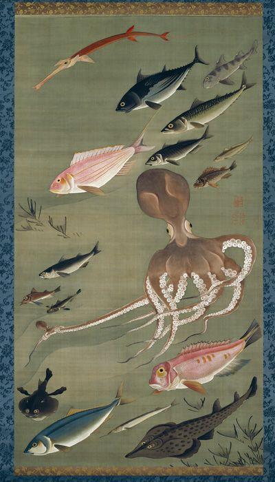 Ito Jakuchu:伊藤若冲 「動植綵絵 群魚図」。タコの足先に子ダコがしがみついている。