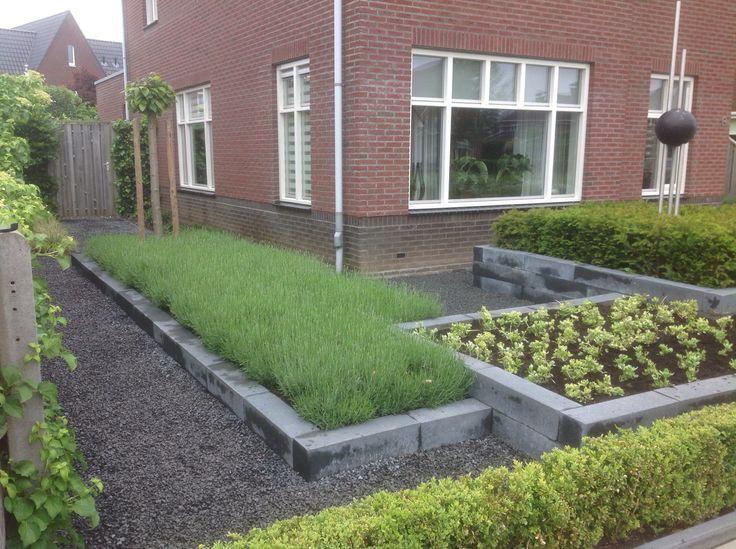 Voortuin met verschillende bakken in hoogtes en strakke beplanting lavendel en pachysandra bont en een vak taxus.    Ontwerp en uitvoering André Meilink
