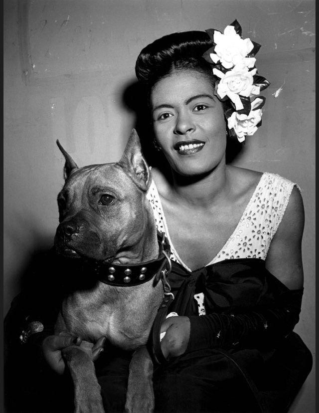 Des stars et leurs chiens  Billie Holiday