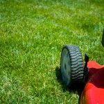 Dokonalý trávník na každou zahradu