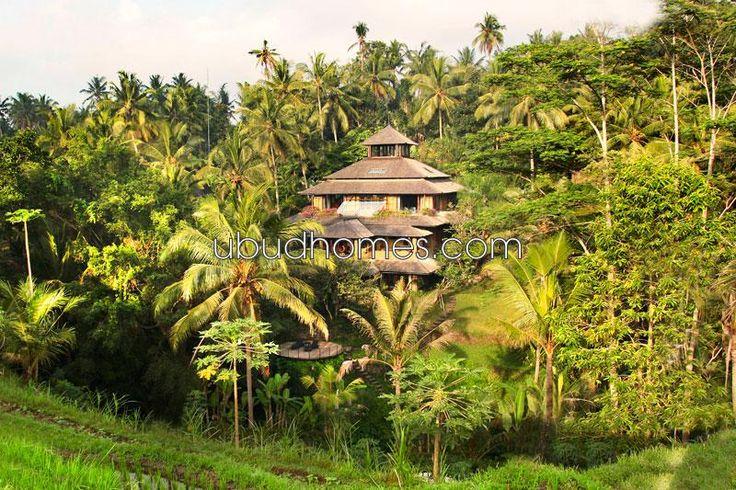 VFS10 - Ubud Homes