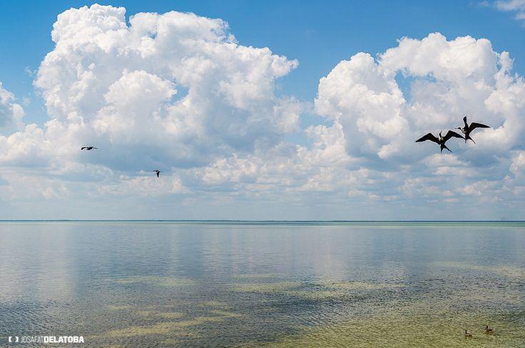 Sunny and peaceful day in holbox #josafatdelatoba #cabophotographer #holbox #landscapephotography #mexico #quintanaroo #sea