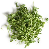 Pea Sprouts | Healing Herbs | Pinterest