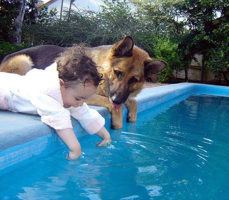So you're saying humans doggy paddle too?