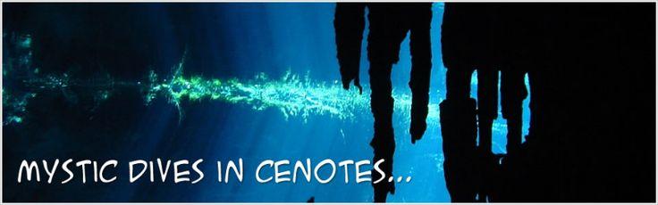 Cenotes Playa