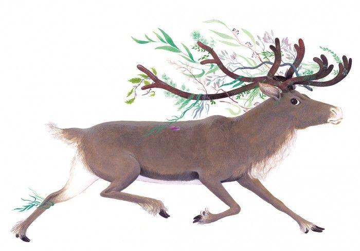 les-contes-des-saisons-claire-de-gastold-renne