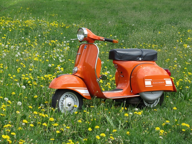 Vespa Rally200... the best solution for your travels!