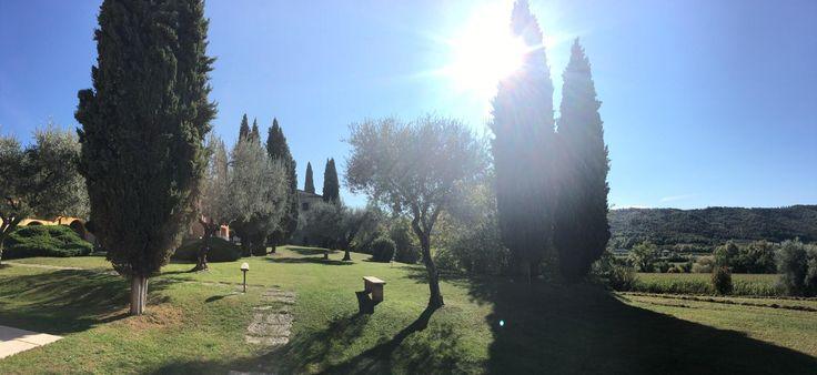 Poiano Resort Appartamenti (Garda, Lago di Garda) a Appartamento - Recensioni da TripAdvisor