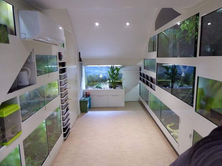 "tailsandco: ""cup-noodle: "" snakes-and-coffee-stains: "" cup-noodle: ""I was allowed to post my friend's reptile room here! He has all built this himself. All the vivs are bioactive. "" Any way to find..."