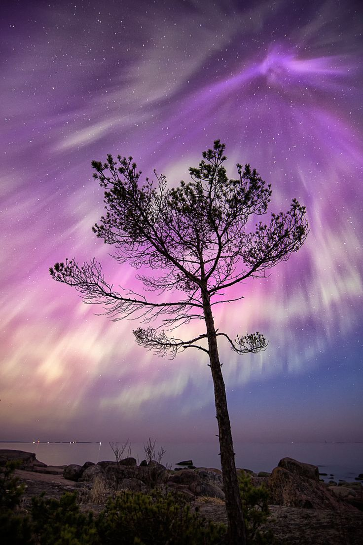 ~~Amazing Aurora Borealis | northern lights, Finland | by Jari Johnsson~~
