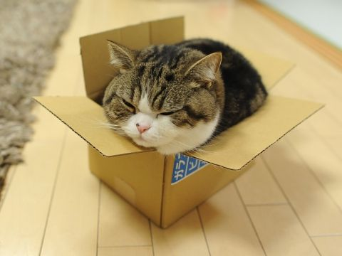 A tight fit