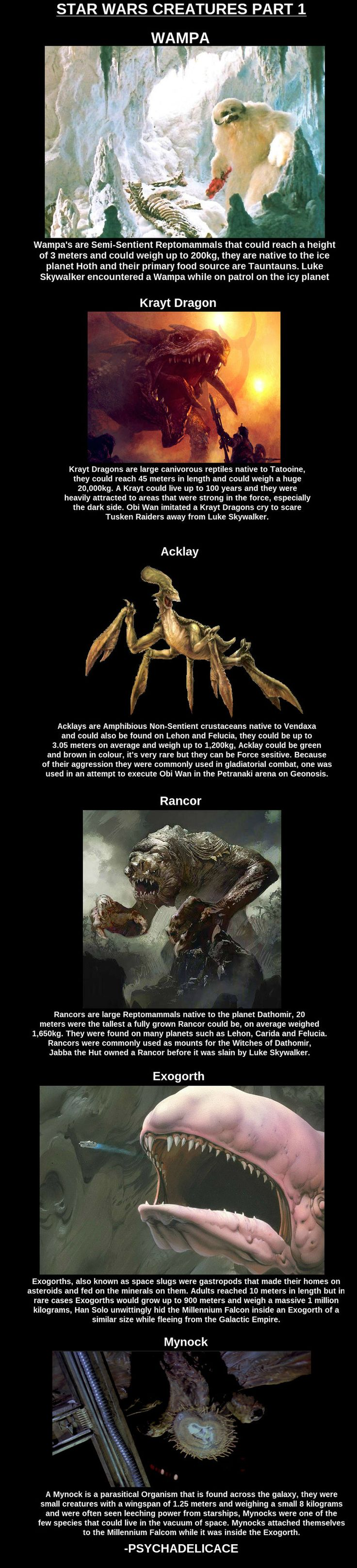 Star Wars Creatures  // funny pictures - funny photos - funny images - funny pics - funny quotes - #lol #humor #funnypictures