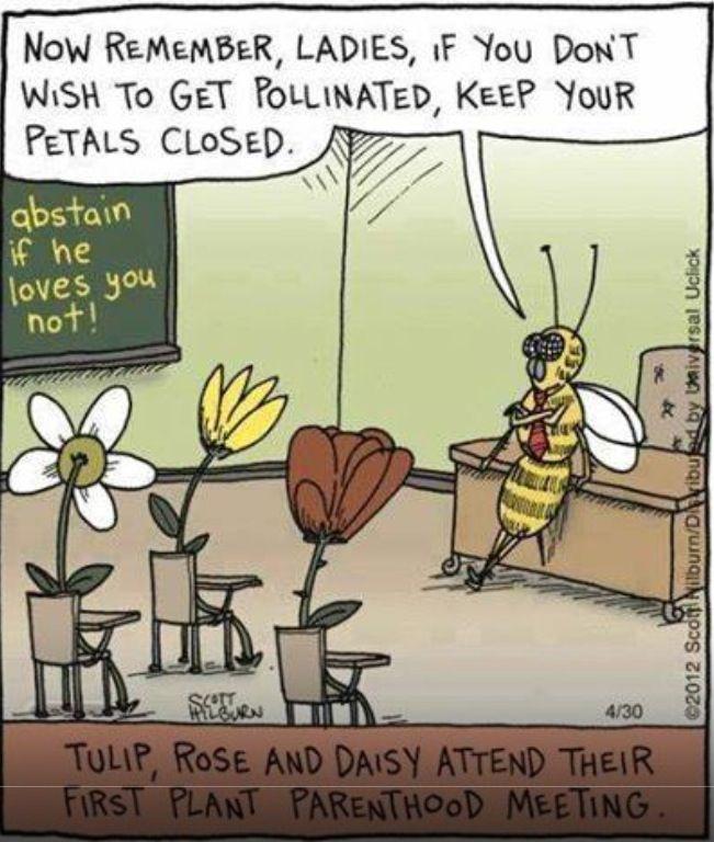 Bee Joke Funny Cartoons Funny Comics Humor